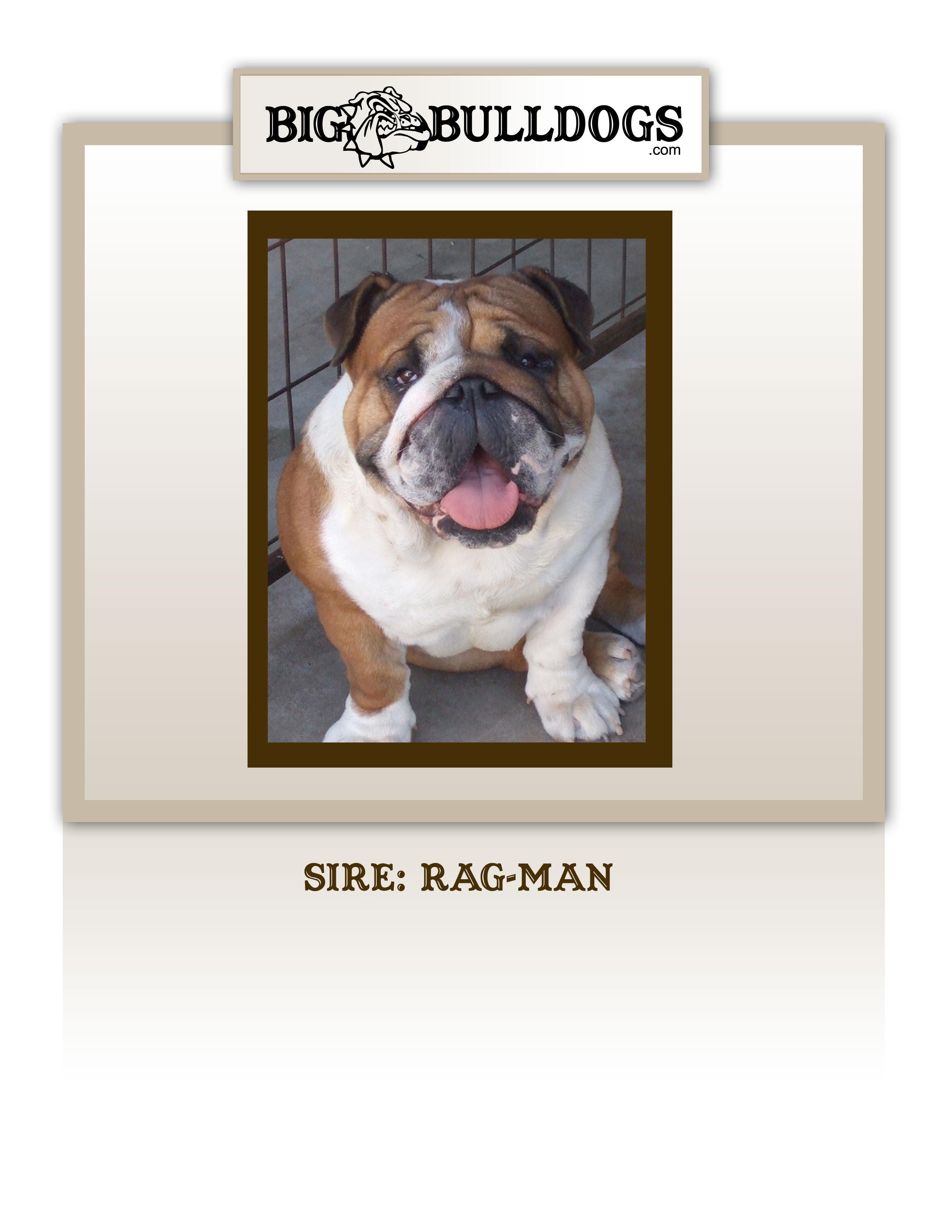 Rag-Man1