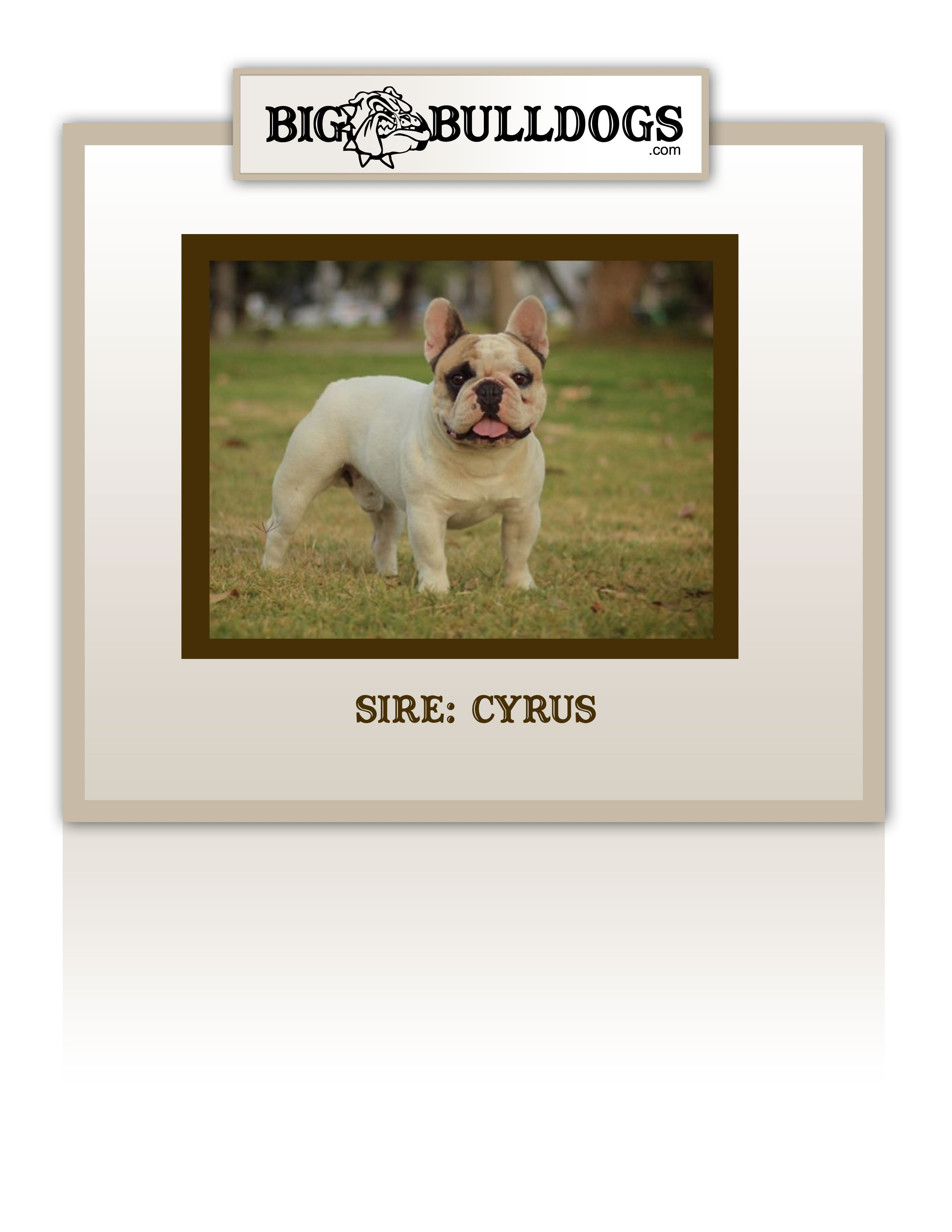 CYRUS-M